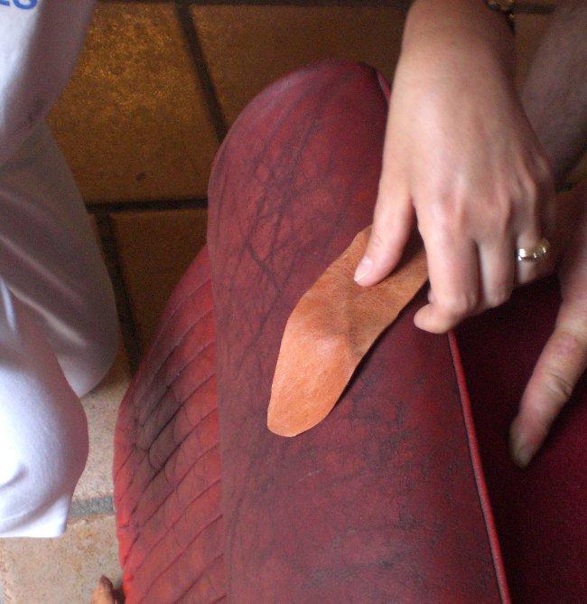 Mobilier table r parer un canap en cuir d chir for Reparation trou canape cuir